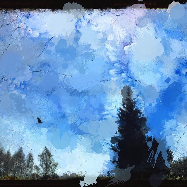 bluebirdblue